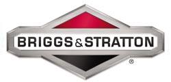 Briggs e Stratton Brescia